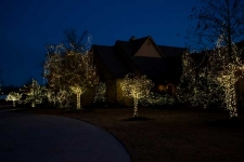 Front yard all white Christmas lighting