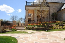 Flagstone path and tulips