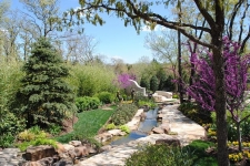 Stream and landscaping