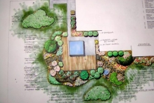 Back yard landscape and hardscape plan