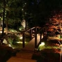 Now is a great time to add lighting to your landscape